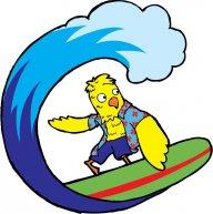 surfin_bird12